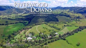 Riverwood Downs -SCL 402  A Temporary Work Training and Research Sponsor